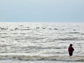 Surf Fishing the Southern Coast