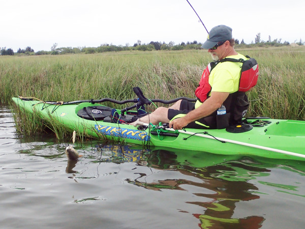 Bringing a Tired Redfish to the Kayak