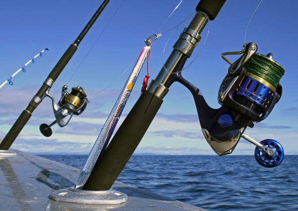 Hammerhead kayak supply top quality kayak fishing gear for Best fishing gear
